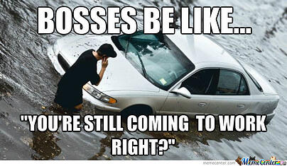 bosses-be-like_o_1340727